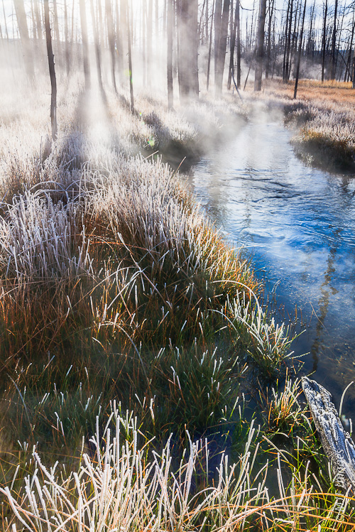 A frozen meadow at Yellowstone National Park, Wyoming, slowly thaws as the sun appears.