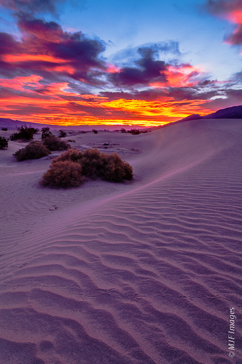 A colorful sunrise greets the sand dunes at Mesquite Flat in Death Valley National Park, California.