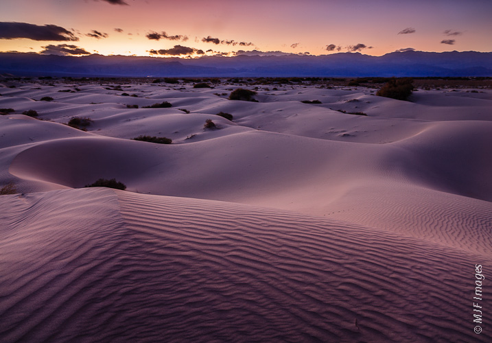 The pristine sand dunes in a less-visited part of Mesquite Flat in Death Valley National Park glow with a purplish hue at dusk.