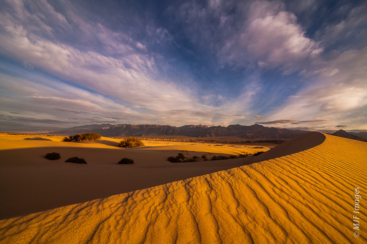 The sand dunes of Death Valley National Park can turn golden in the first light of morning.