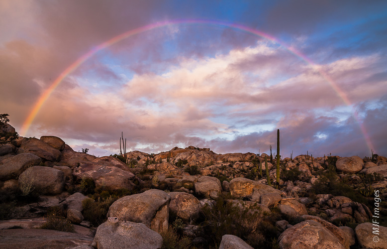 A rare rainbow graces the desert during sunrise in Baja California, Mexico.