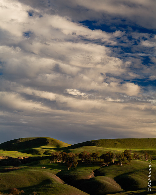 The rolling hills of the coast ranges in California undulate below a winter sky.