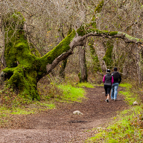 A couple walks the trails of Garland Ranch Regional Park in Monterrey County, California.