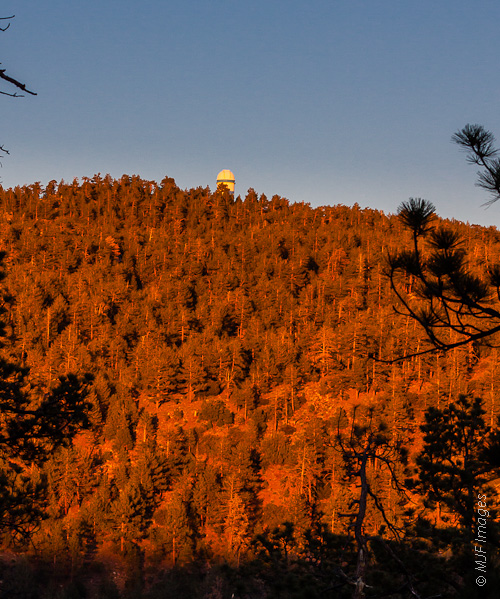 The Mexican astronomical observatory sits atop a high forested mountain on the Baja Peninsula.