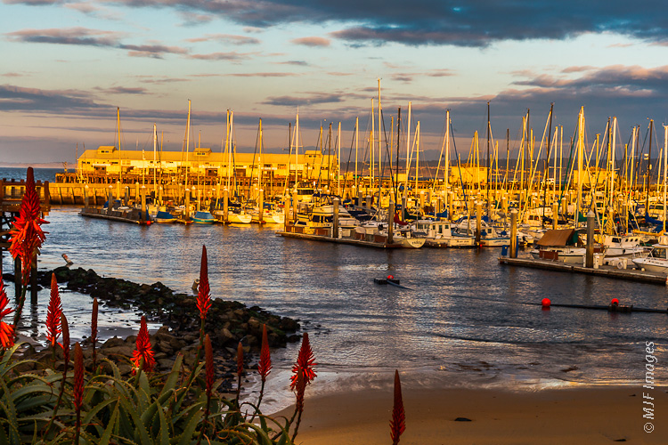 The fishing harbor at Monterey, California is illuminated with winter's late afternoon light.