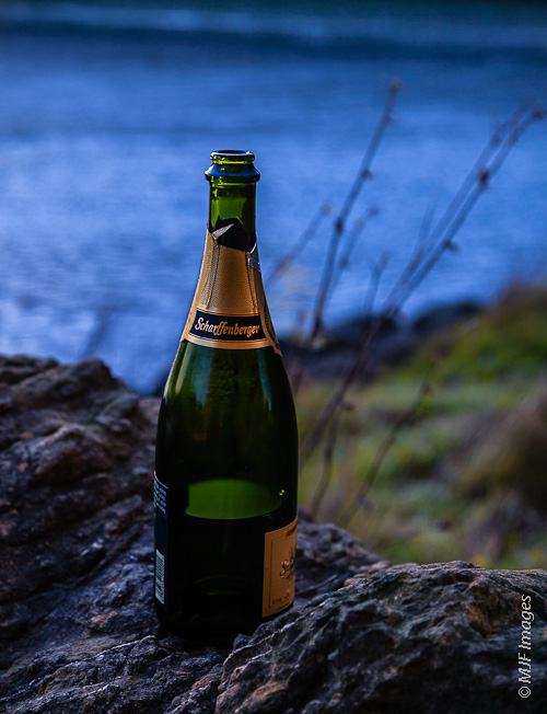 A half-empty champagne bottle is all that is left of New Year's Eve celebrations, the Russian River in the background.