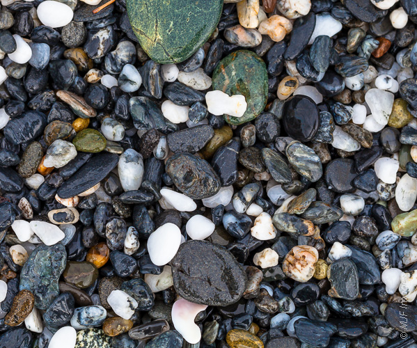 An amazing variety of stones are present on this northern California beach.