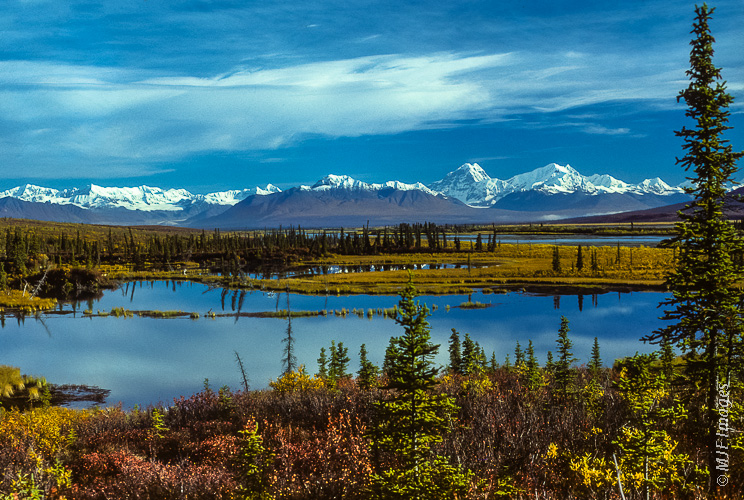 To approach this part of the Alaska Range, you need to cross an enormous swampy river valley full of moose and grizzly bears, maybe a wolf pack.