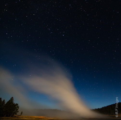 Steam drifts over Yellowstone's Lower Geyser Basin on a starry evening.