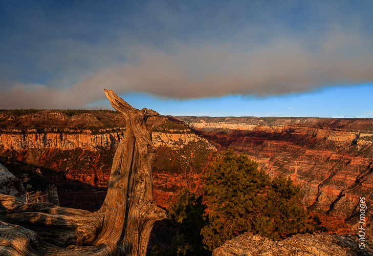 "This fire, on the north rim of the Grand Canyon is one of several ""prescribed burns"" that took place in Fall 2012."