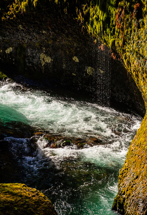 Eagle Creek flows through its gorge as Spring melt cascades from the surrounding lush Oregon forest.
