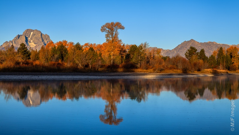 The Snake River's Oxbow Bend in Grand Teton National Park, Wyoming reflects autumn colors.