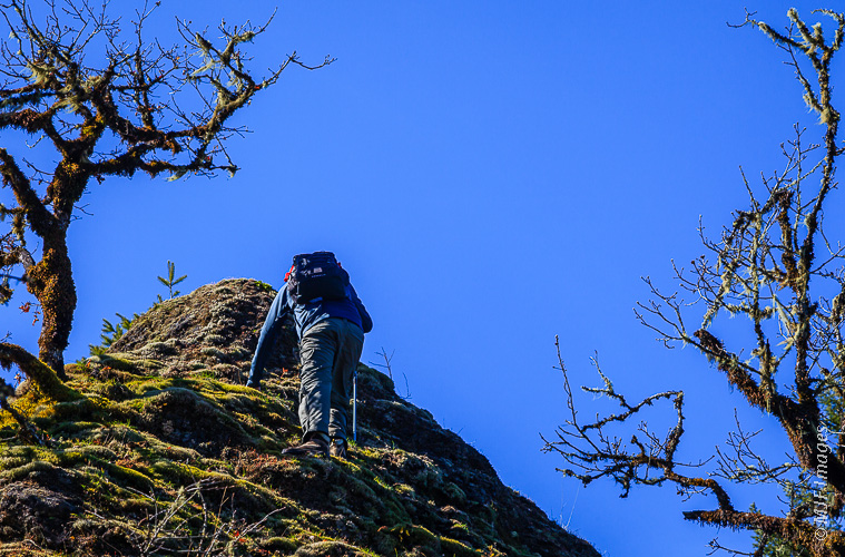 Scrambling up so-called 4 1/2 Mile Ridge in the Columbia River Gorge, Oregon.