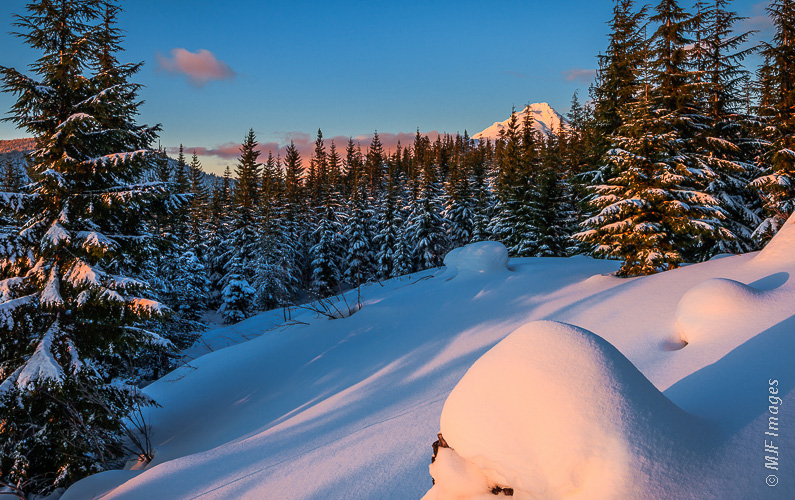 Mount Hood peeks above the fir trees during a cross-country ski outing in Oregon's Cascade Mountains.