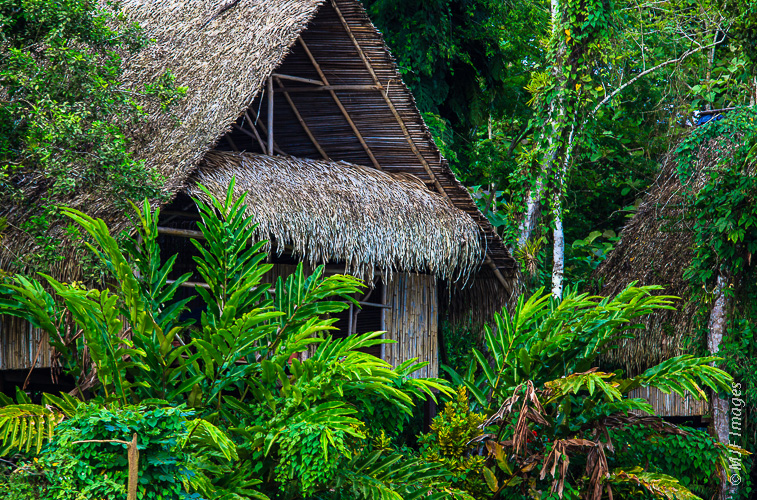 Home in the Jungle: Life on the Rio San Juan, which flows along the border between Costa Rica and Nicaragua.