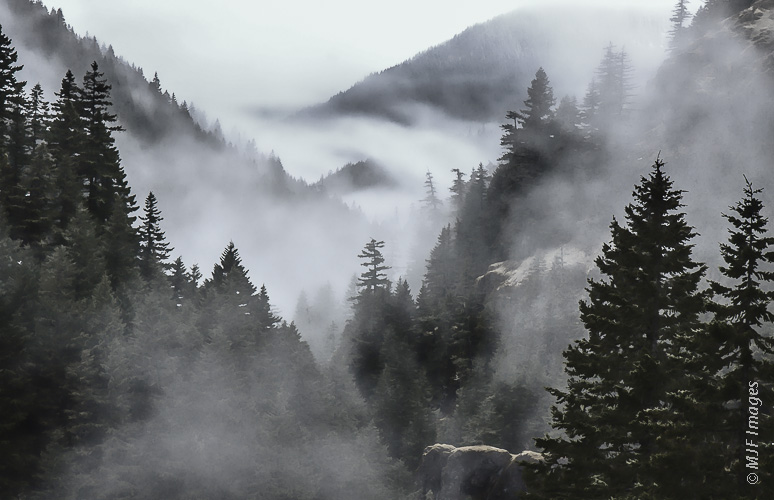 Typical weather in western Oregon's forested Cascade Mountains outside of the height of summer.