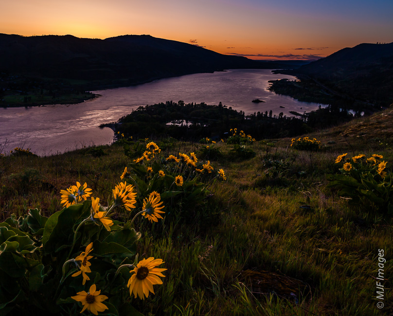 Dawn breaks on Rowena Crest in Oregon's Columbia River Gorge.