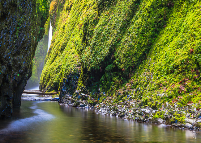 In Onenta Gorge, Oregon, the approach to its waterfall is guarded by deep water in spring's high water flows.