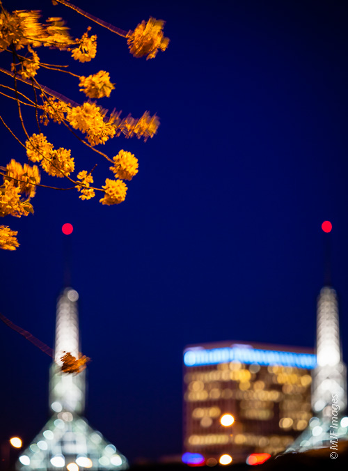 The Convention Center towers are in the background as I focus on the cherry blossoms on the cusp of nightfall.