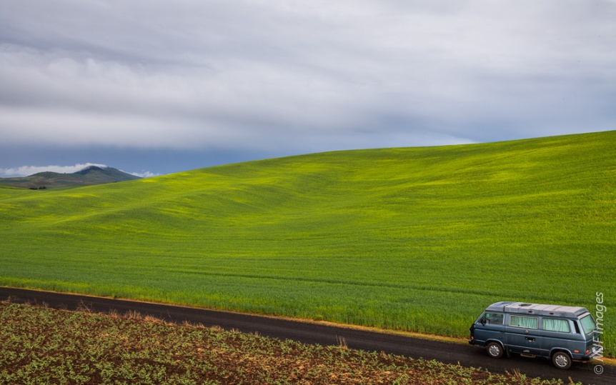The vibrant green of the Palouse in eastern Washington after a spring shower.