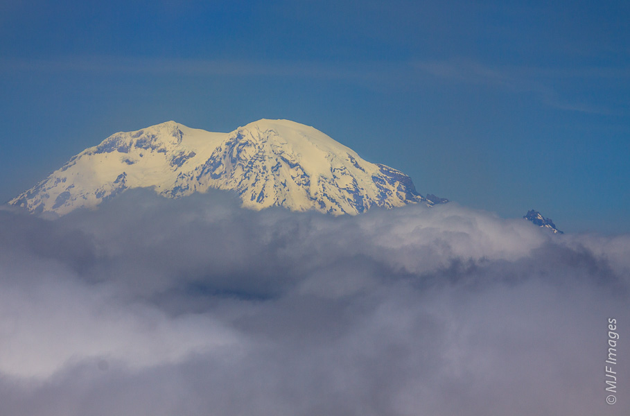 The Big Boy, Mount Rainier, from Mount St. Helens.