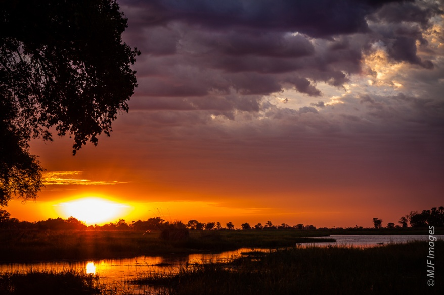 Sunrise from a campsite deep in the Okavango Delta, Botswana.