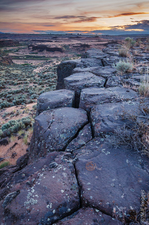 Standing atop the columns of a basalt flow, cooled and hardened millions of years ago, in Washington's Channeled Scablands.