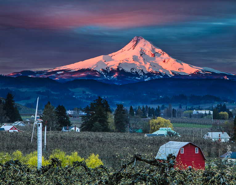 Sunrise on the north side of Mt Hood from the pastoral Hood River Valley, Oregon.