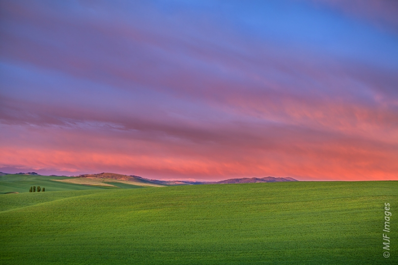 The Palouse in eastern Washington is a region of wide-open spaces.