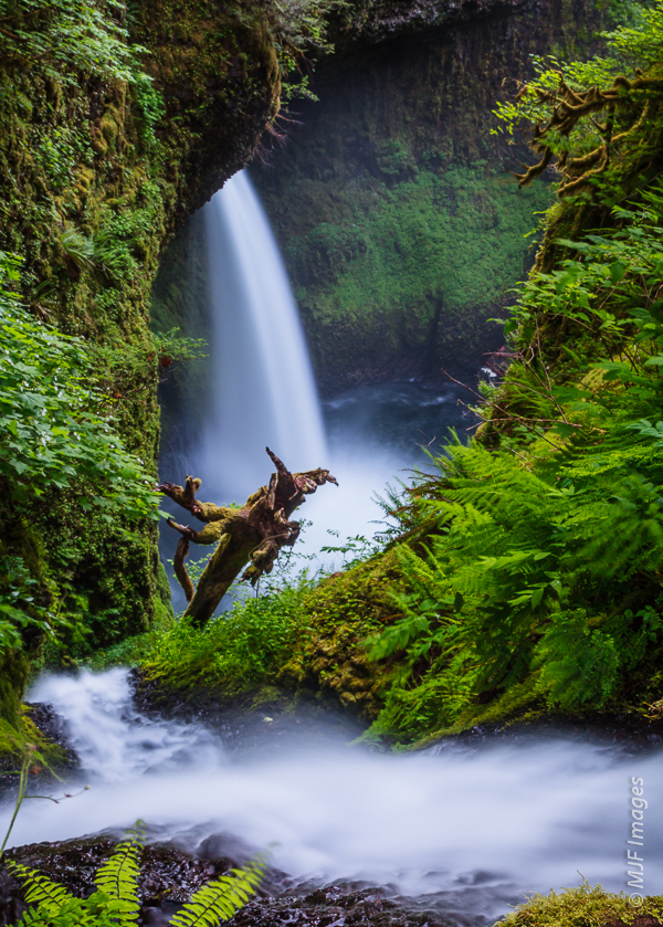 Metlako Falls in the Eagle Creek Gorge (Oregon), as viewed from above.