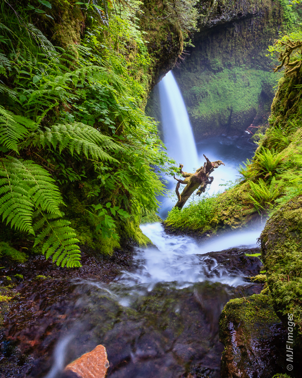 Metlako Falls in the Columbia River Gorge is difficult to access.  Here it's viewed from above.