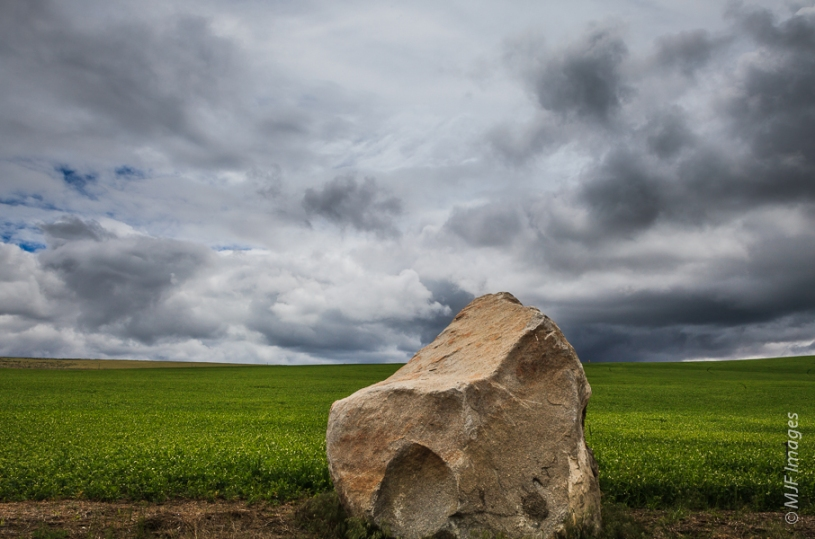 A glacial erratic dropped from an iceberg rafted down by a giant ice-age flood sits incongruously in a central Washington farm field.