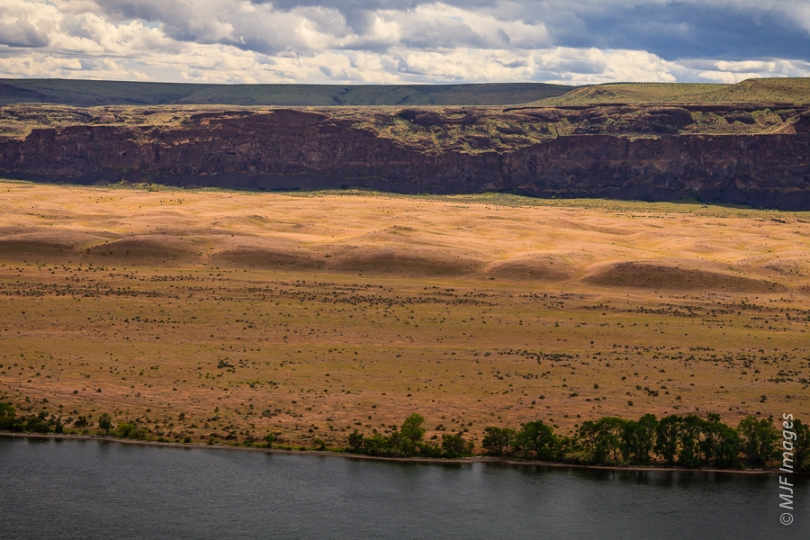 Giant current ripples formed during the ice-age Missoula Floods are found along the Columbia River in eastern Washington.