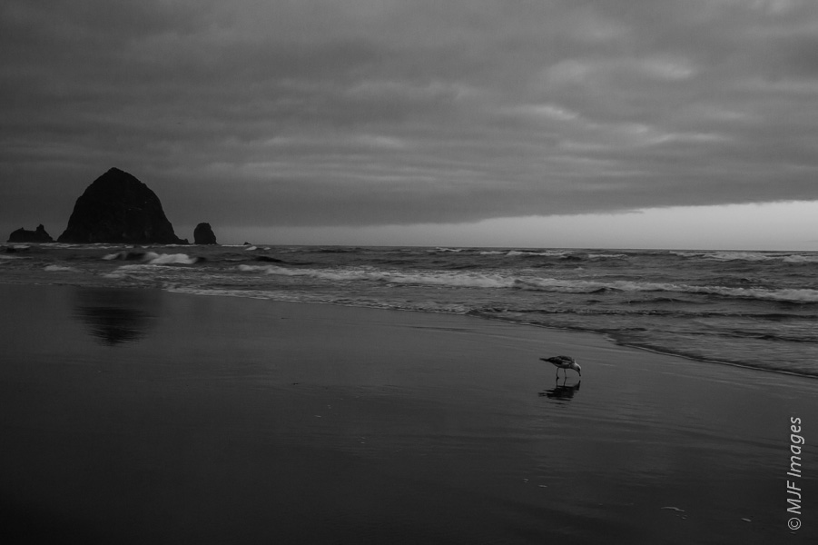 Haystack Rock and Cannon Beach.