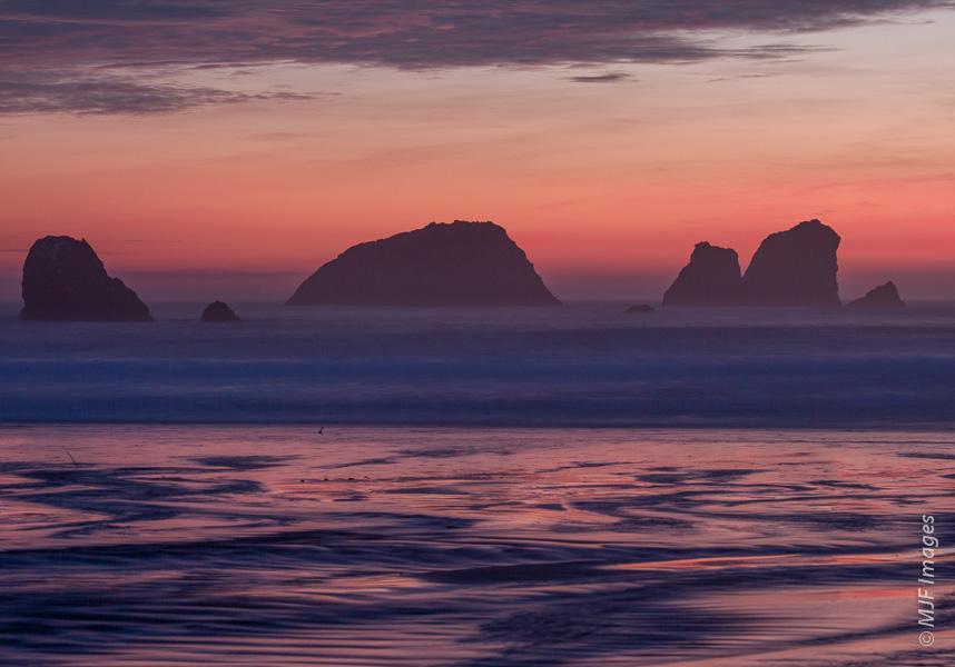 Crescent_Beach_1-23-11_50D_052
