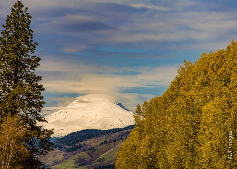 Mount Adams viewed from Hood River Valley in Oregon.