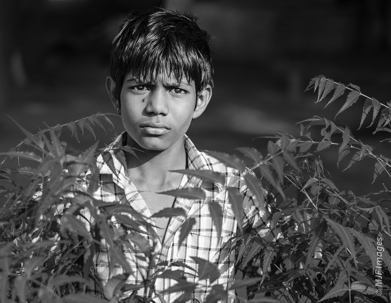 A boy in a village in northern India gazes with a peculiar intensity.