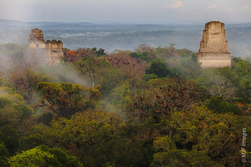 A misty view of some of the major temples at Tikal, the huge ancient Mayan city in Guatemala.
