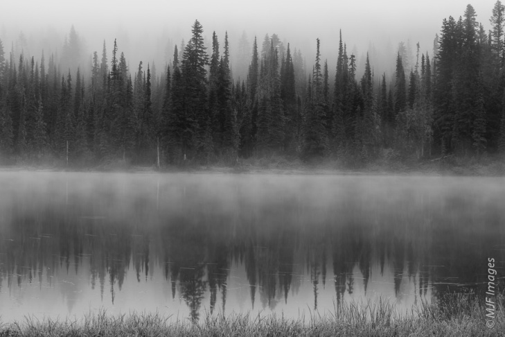Black and white works well for reflections too, as demonstrated here in the morning mist and fog at Mount Rainier National Park.