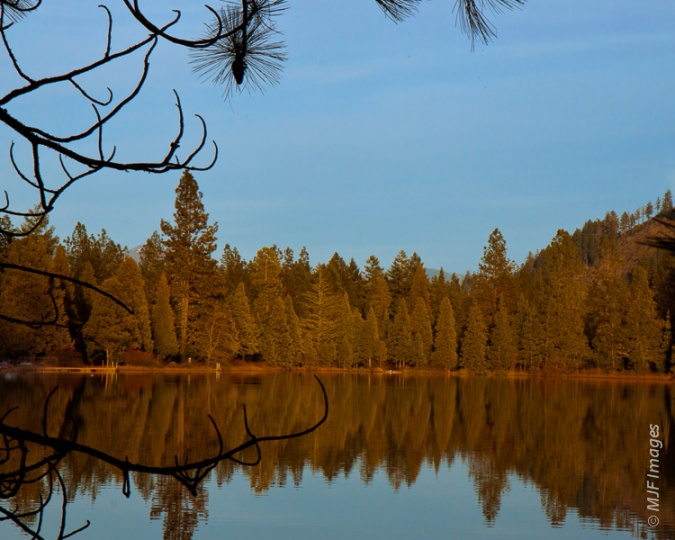 The evergreen trees are turned gold and reflected in a mountain lake just outside Cave Junction in southwestern Oregon.