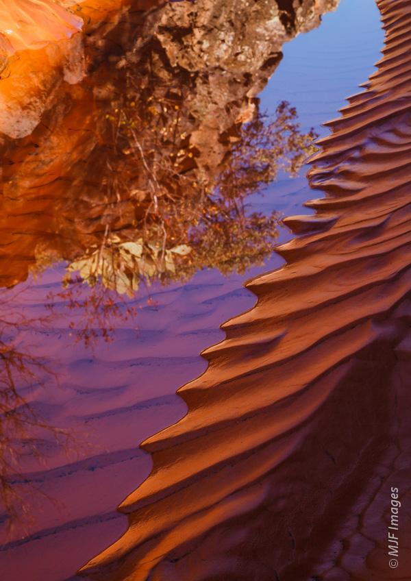 An example of an abstract composition using reflections: water from springs collects in Snow Canyon, Utah.