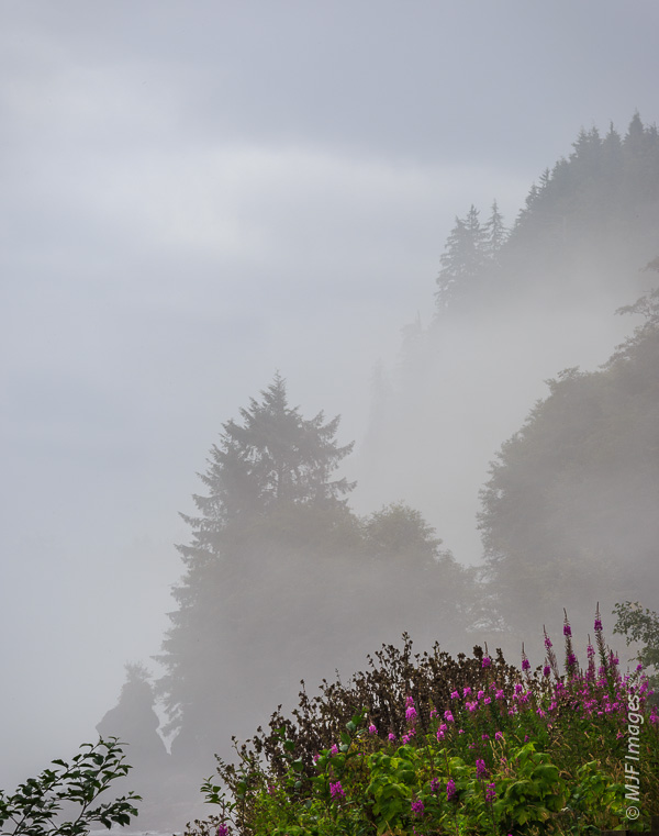 The rugged and wet north coast of the Olympic Peninsula in Washington faces the Strait of Juan de Fuca and is prone to foggy weather.