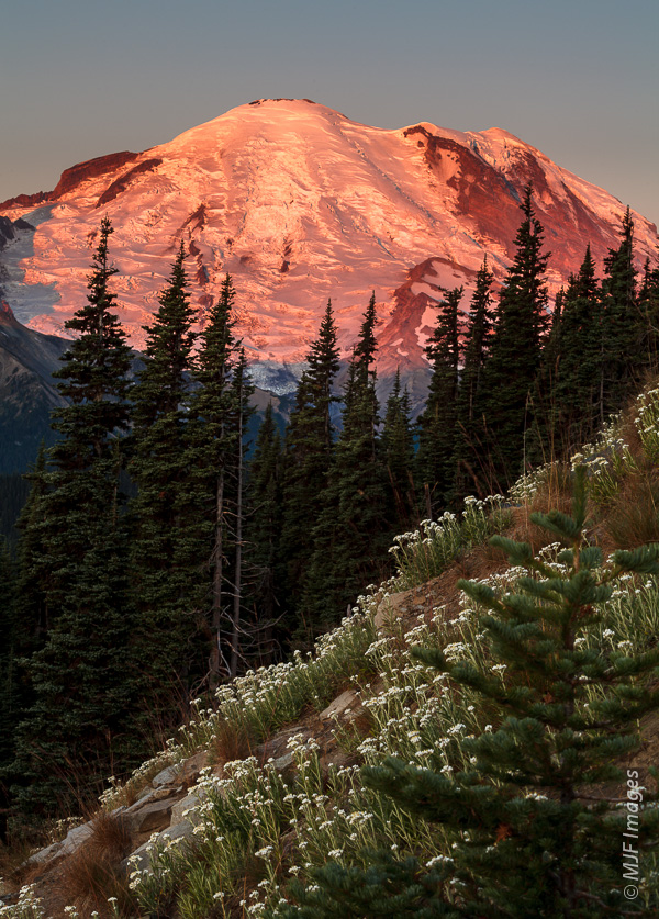 Mount Rainier and the largest glacier in the lower 48 United States, the Emmons, are bathed in early morning sunshine.