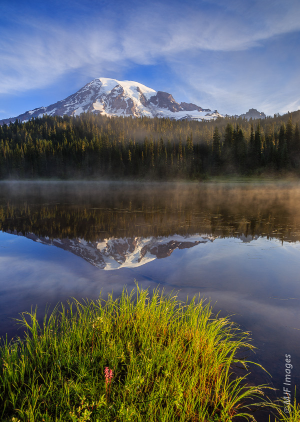 Mount Rainier in the morning.  This is a shot where sharpness on the background is important but so is good depth of field.