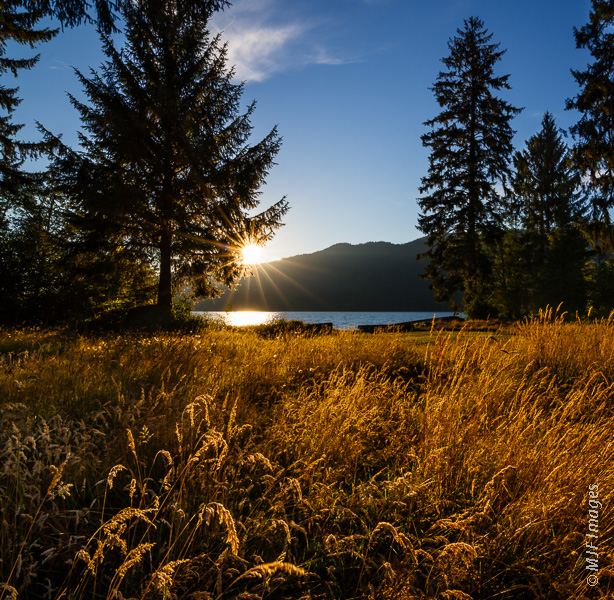 Lake Quinalt on Washington's Olympic Peninsula is a beautiful place for a sunset stroll.
