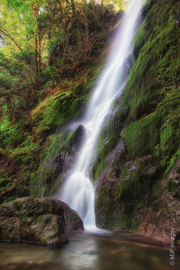 A pretty little waterfall nestles in a verdant alcove near Lake Quinault.