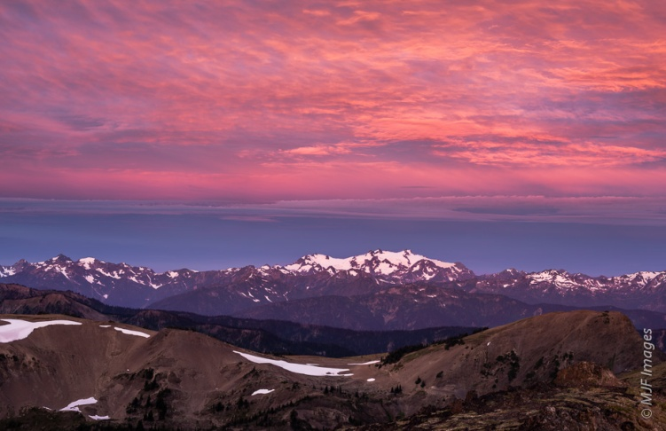 Mount Olympus and companions bask under a beautiful dawn sky as viewed from atop Hurricane Ridge in Olympic National Park, Washington.