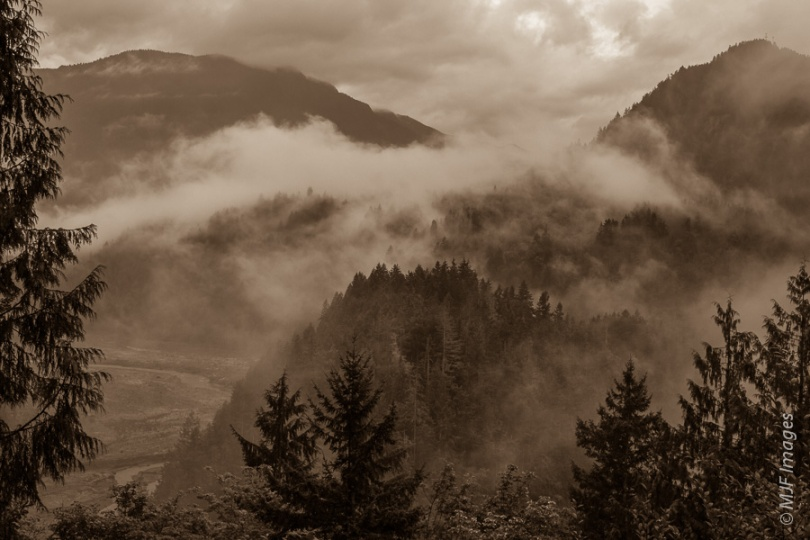 Fog and mist moves in on the beautiful Elwha Valley on the Olympic Peninsula near Lake Crescent.