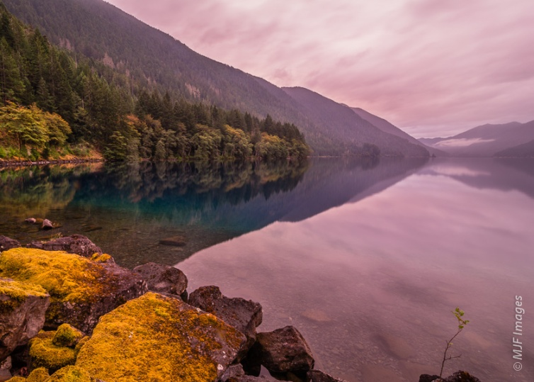 Lake Crescent on the northern Olympic Peninsula in Washington is calm under misty skies.