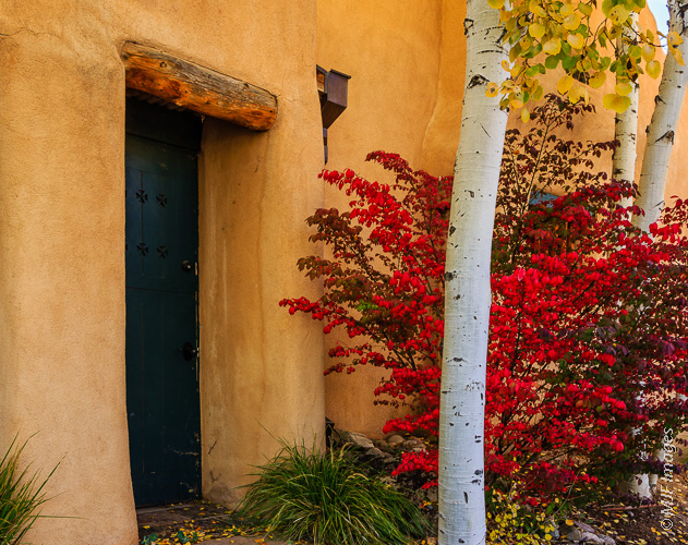 A bit of fall color in Taos, New Mexico.